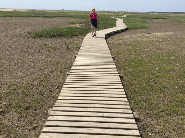 audubonboardwalkblog