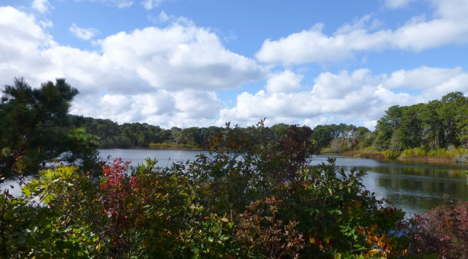 Kettle Pond On the Wiley Park Trails In Eastham On Cape Cod