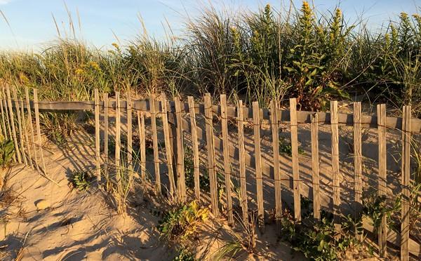 Always Love A Beach Fence On Cape Cod