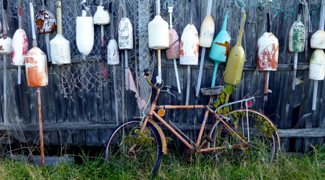 Love The Old Buoys In Eastham On Cape Cod