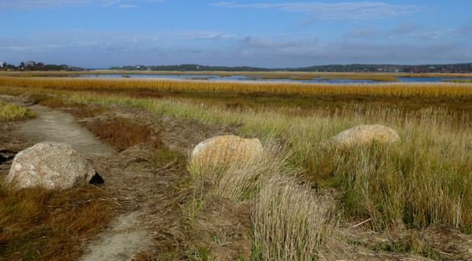 Pretty Hike On Lieutenant Island In Wellfleet On Cape Cod