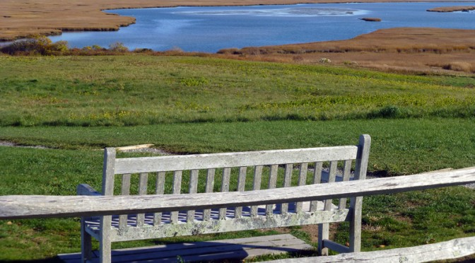 Perfect Picnic Bench At Fort Hill On Cape Cod
