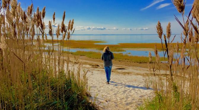 My Secret Beach On Cape Cod