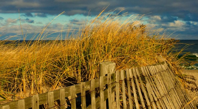 Another Beautiful Beach Fence At Nauset Beach In Orleans On Cape Cod