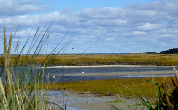 Tranquil Day At Boat Meadows On Cape Cod