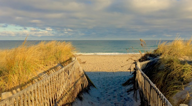 Beach Fences At Nauset Beach In Orleans On Cape Cod