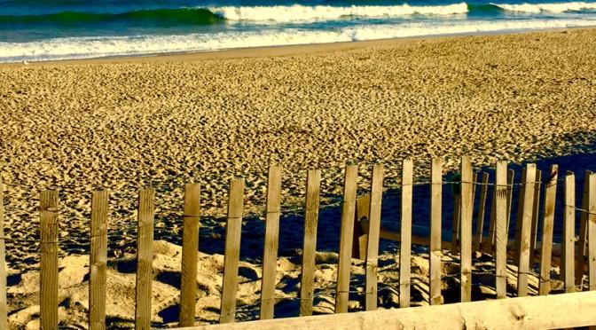 Coast Guard Beach Fence In Eastham On Cape Cod