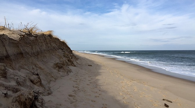 Eroding Dunes At Nauset Beach In Orleans On Cape Cod