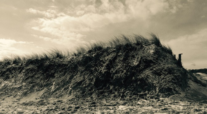 Nauset Beach Grass In Black And White Or Color Photograph?
