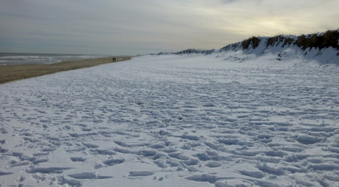 Nauset Beach In Orleans On Cape Cod Was Gorgeous After The Snow!