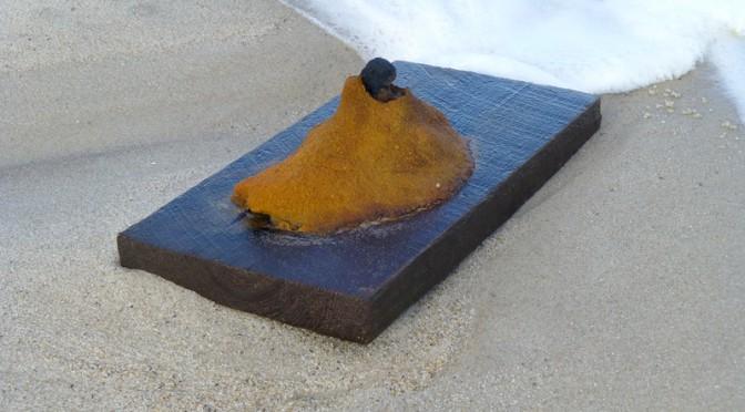 Rusty Treasure On Nauset Beach In Orleans On Cape Cod