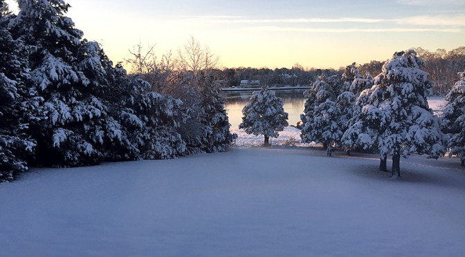 Beautiful Morning After The Snow In Orleans on Cape Cod