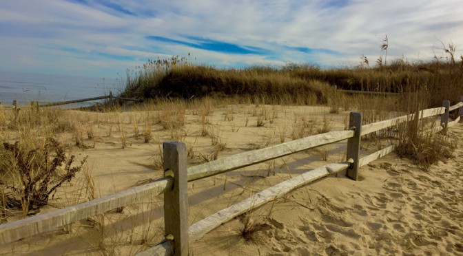 Love This Beach Fence On Cape Cod