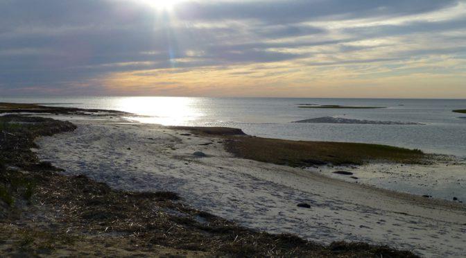 Beautiful Day On Cape Cod Bay