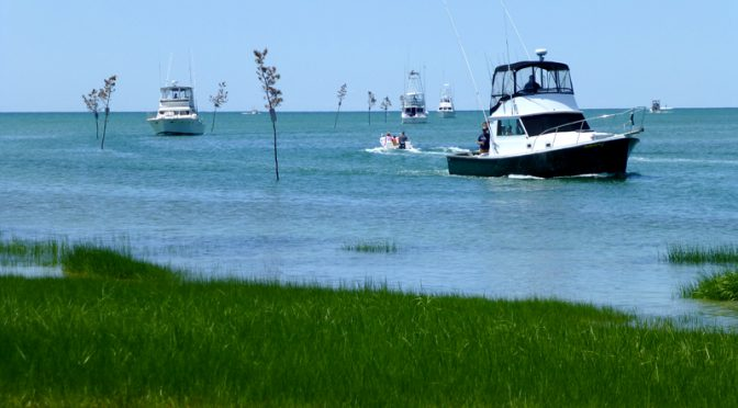 Rock Harbor In Orleans On Cape Cod Is Very Busy This Summer