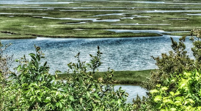 Nauset Marsh On The National Seashore From Fort Hill Is Spectacular!