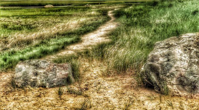 Beautiful Walk Along Nauset Marsh At Hemenway Landing On Cape Cod