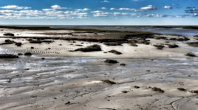 Boat Meadow Beach In Eastham On Cape Cod At Low Tide