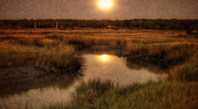 Full Hunters Moon At Boat Meadow On Cape Cod