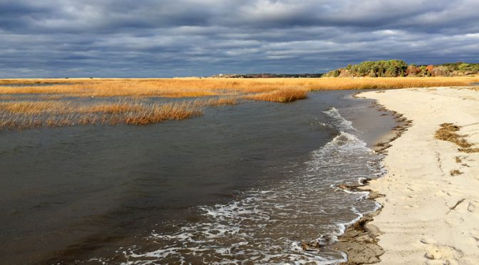 Stormy Day On Cape Cod Bay