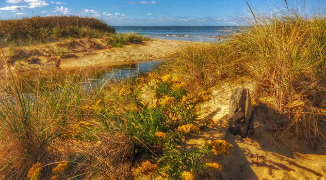 Pretty Day At The Beach On Cape Cod Bay