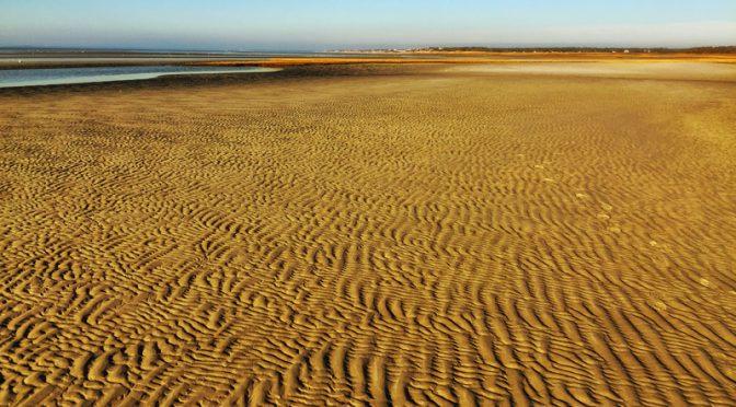 Dead Low Tide On Cape Cod Bay