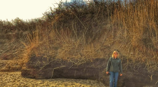 Coast Guard Beach Dunes Are Huge On Cape Cod