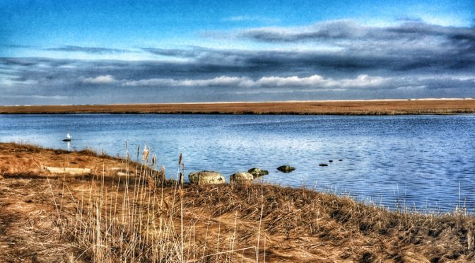 Nauset Marsh From Fort Hill In Eastham On Cape Cod