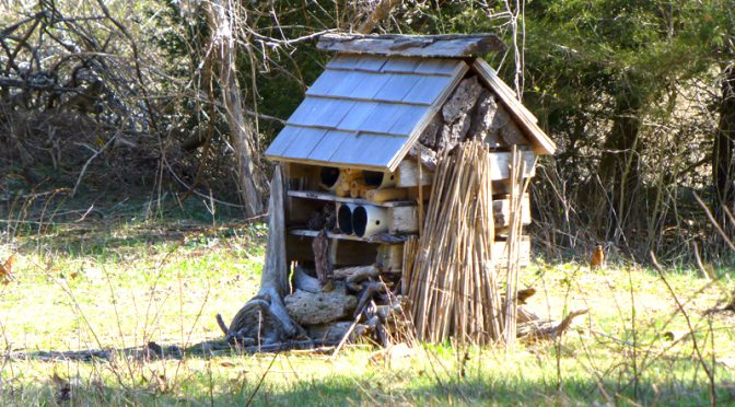 Eclectic Bird House At The Wellfleet Bay Wildlife Sanctuary On Cape Cod