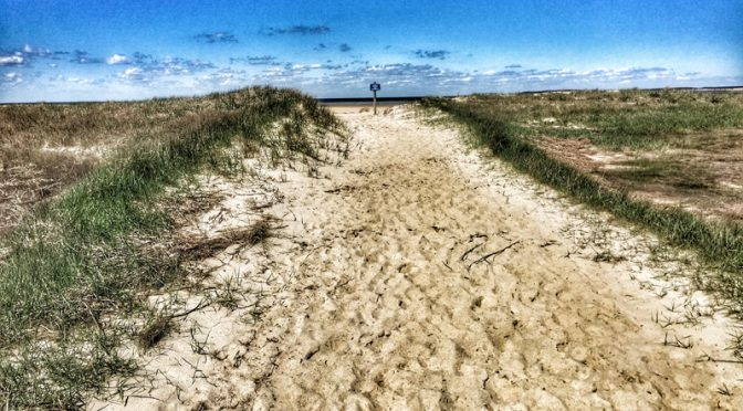 Beautiful Trail To The Beach On Cape Cod Bay