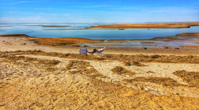 Solitude At Boat Meadow Beach On Cape Cod