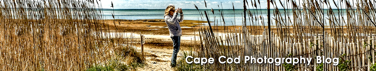 Cape Cod Photography Blog