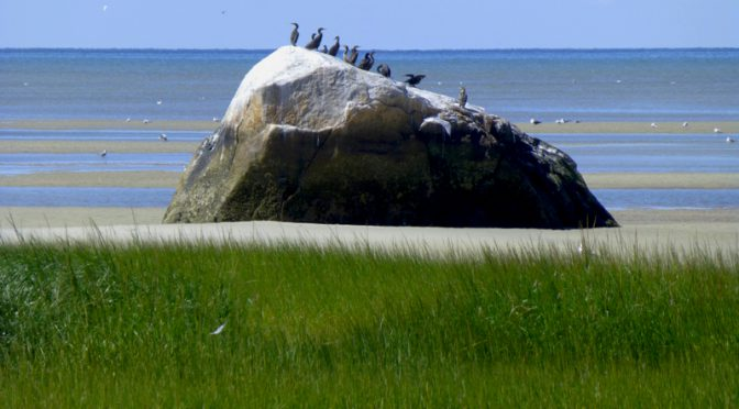 The Rock At Rock Harbor In Orleans On Cape Cod