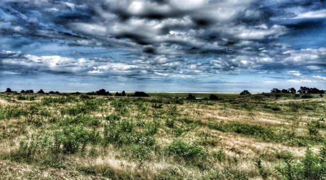 Fort Hill In Eastham On Cape Cod Was Spectacular!