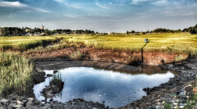 Salt Marsh In Eastham On Cape Cod At Low Tide