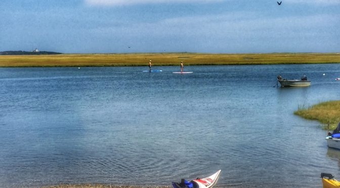Paddle Boarders At Nauset Marsh On Cape Cod