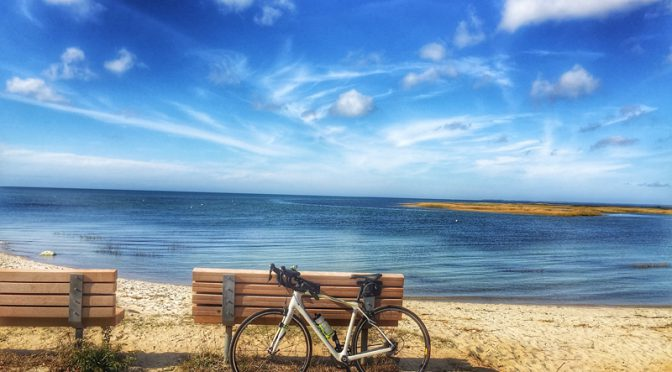 Gorgeous Day For A Bike Ride On Cape Cod!