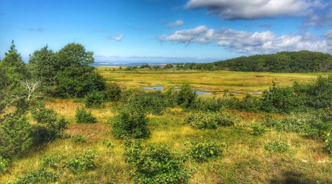 Beautiful View From The Wellfleet Bay Wildlife Sanctuary On Cape Cod