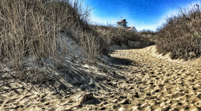 Coast Guard Beach On The National Seashore On Cape Cod Was Gorgeous!