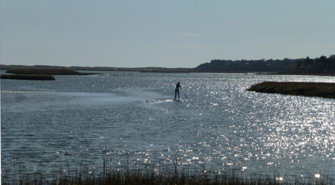 Paddleboarder Enjoying Nauset Marsh On Cape Cod