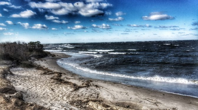 It's Windy On Cape Cod Bay