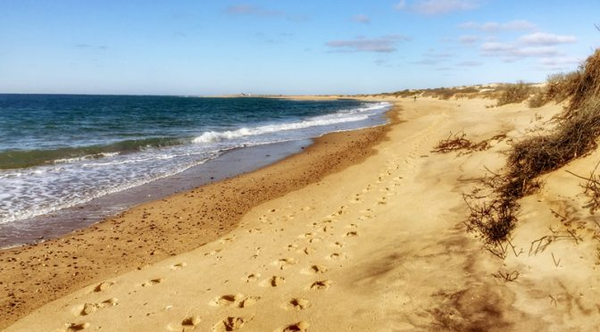 Herring Cove Beach In Provincetown On Cape Cod Was Spectacular