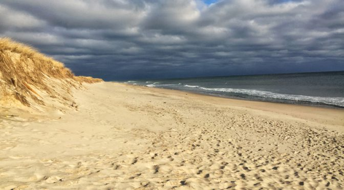 Early Morn On Nauset Beach On Cape Cod