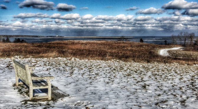 Wintry Nauset Marsh From Fort Hill On Cape Cod