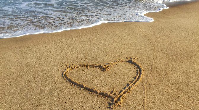 Happy Valentine's Day To You All From The Shores Of Cape Cod!