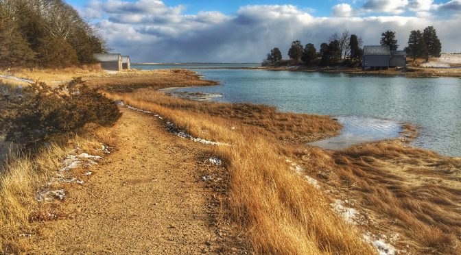 The Colors On Salt Pond Trail By Nauset Marsh On Cape Cod Were Gorgeous