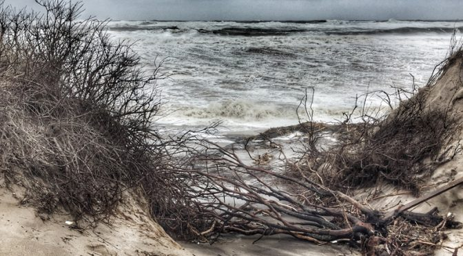 Coast Guard Beach On The National Seashore During The Storm Last Weekend