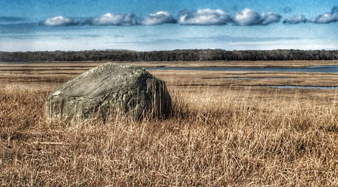 Glacial Rock At Fort Hill In Eastham On Cape Cod