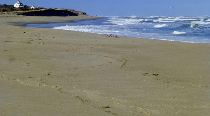 Gorgeous Waves At Coast Guard Beach On Cape Cod