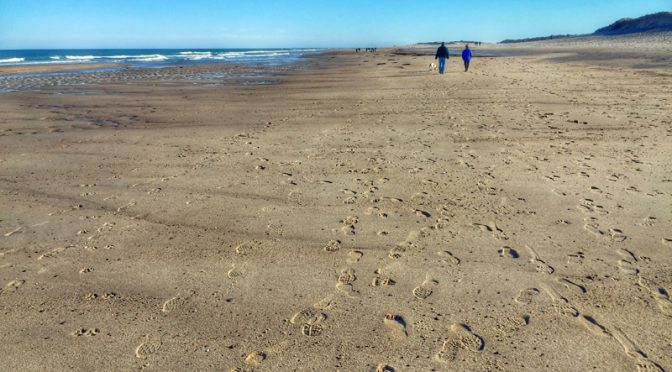 Nauset Beach At Low Tide On Cape Cod